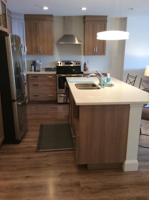 Side view of kitchen, great cupboards, large island with dishwasher and double sink.