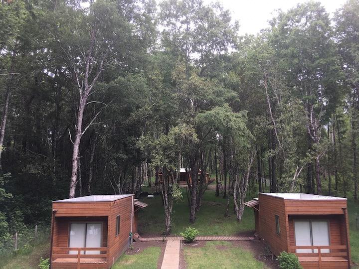 Cabaña 2 Hualles de pucon