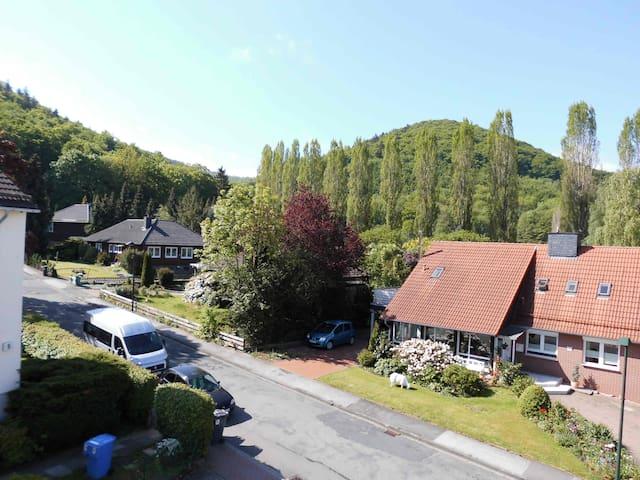 Ferienwohnung Sonnenschein - Bad Harzburg - Selveierleilighet