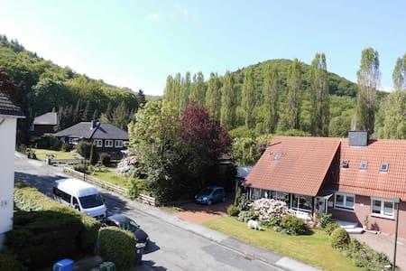 Ferienwohnung Sonnenschein - Bad Harzburg - Συγκρότημα κατοικιών