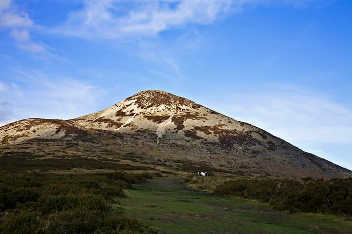 Sugarloaf Mist. Co.Wicklow. - Delgany - Huis