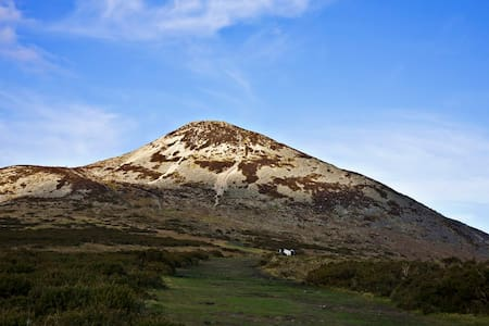 Sugarloaf Mist. Co.Wicklow. - Delgany