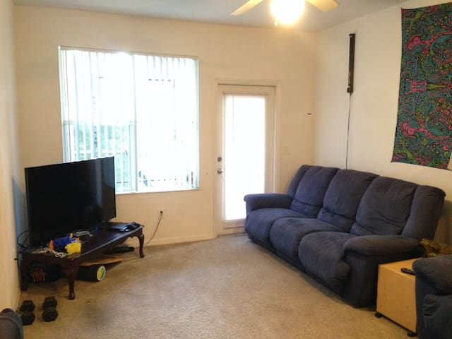 Couch next to a big TV - Gainesville - Flat