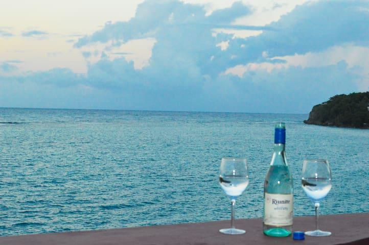 Oceanfront Villa with Chef, Private Pool, Cove!! - Ocho Rios - Villa