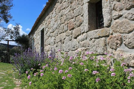 "B&B in an ancient ""Stazzo"" Sardinia - Luogosanto - Bed & Breakfast"