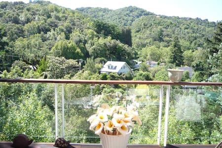 Writer/artist Paradise Home w view - Fairfax - Дом