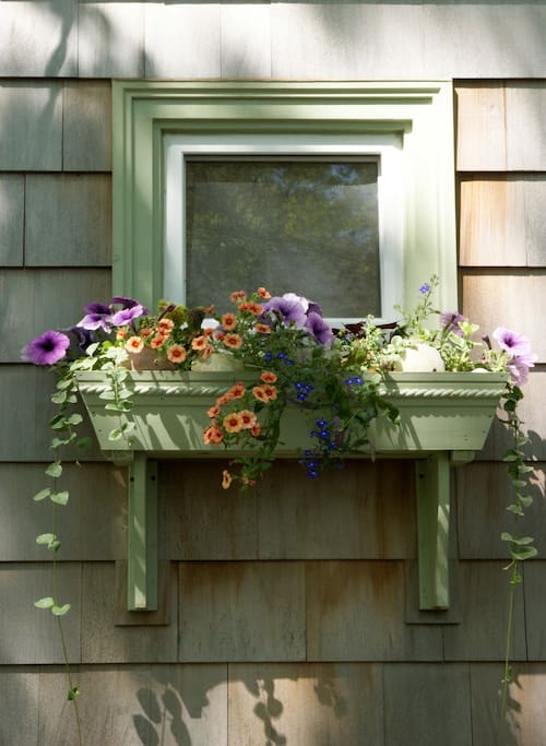 Window box adds color & charm!