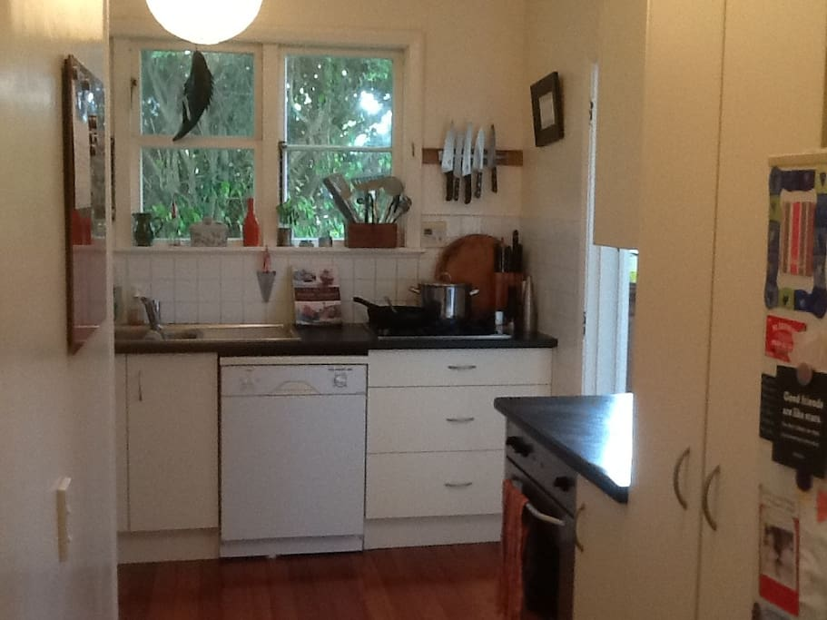 Compact kitchen with gas hob and electric oven.