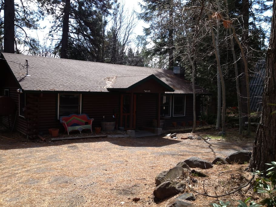 cozy cabin king bed relax cabins for rent in mount shasta