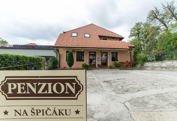 Penzion Na Špičáku - Double Room č.1