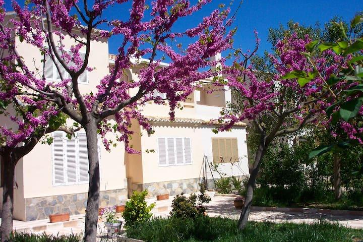 Casa en  la naturaleza en Bocairent (VALENCIA) - Bocairent - บ้าน