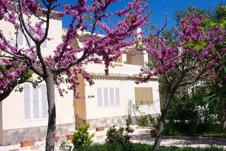 Casa en  la naturaleza en Bocairent (VALENCIA) - Bocairent - Casa