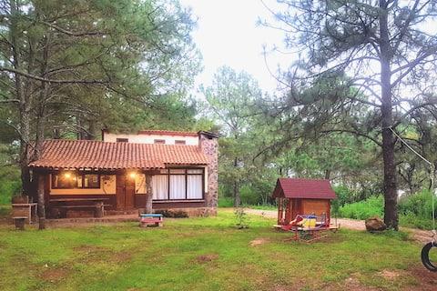 """Cabaña """"Colibrí """" en el Bosque. (Cerca de Tapalpa)"""