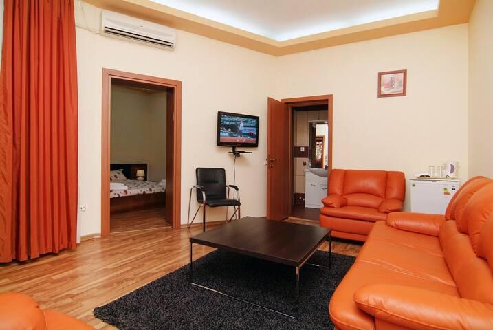 Vila Mario Residence in Bucharest  - Bukurešť - Dům