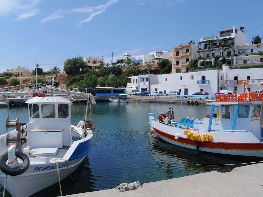 Vue du port. Port view.