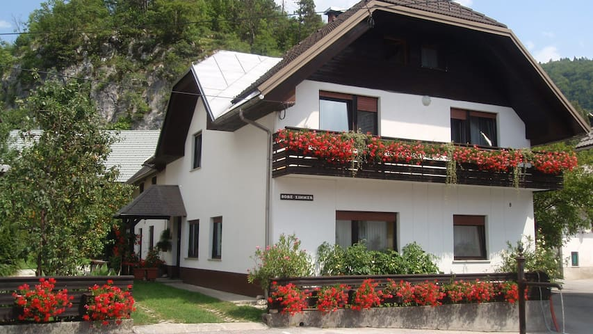 Apartment Gregorc - near Bled - Bohinjska Bela - Apartment