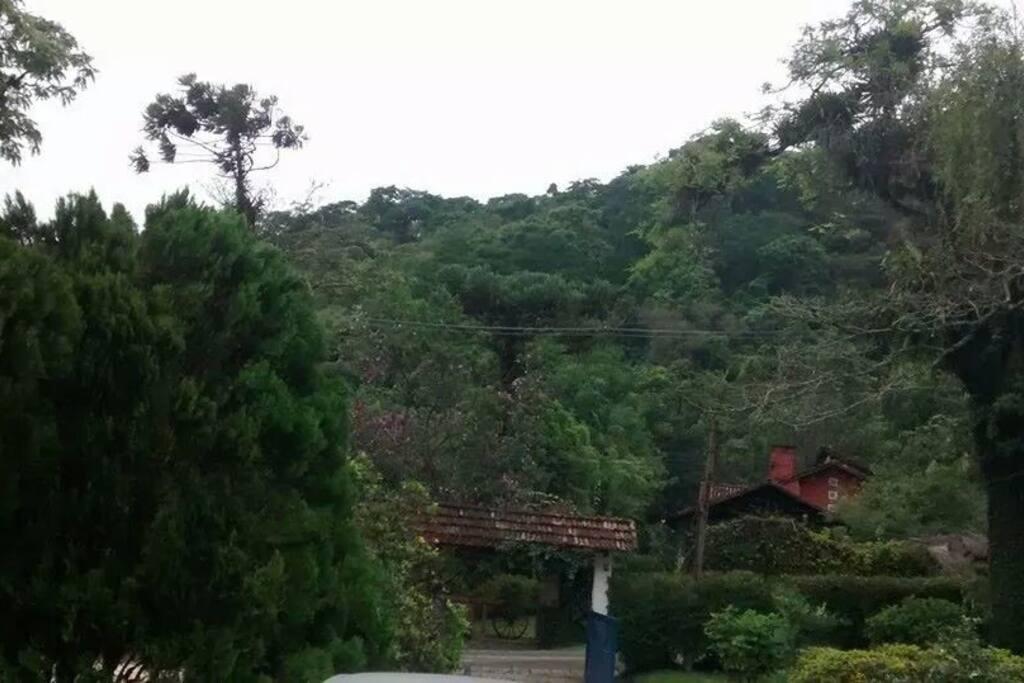 Vista da Natureza acima do portão de entrada do sítio