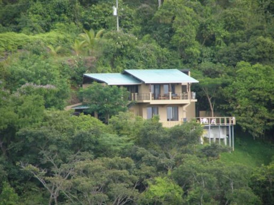 View of the house from across the jungle bowl