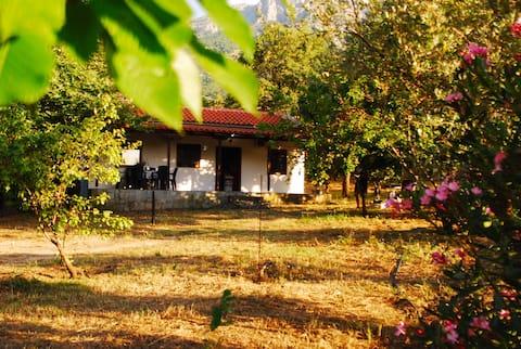 Eroessa House Kato Kariotes