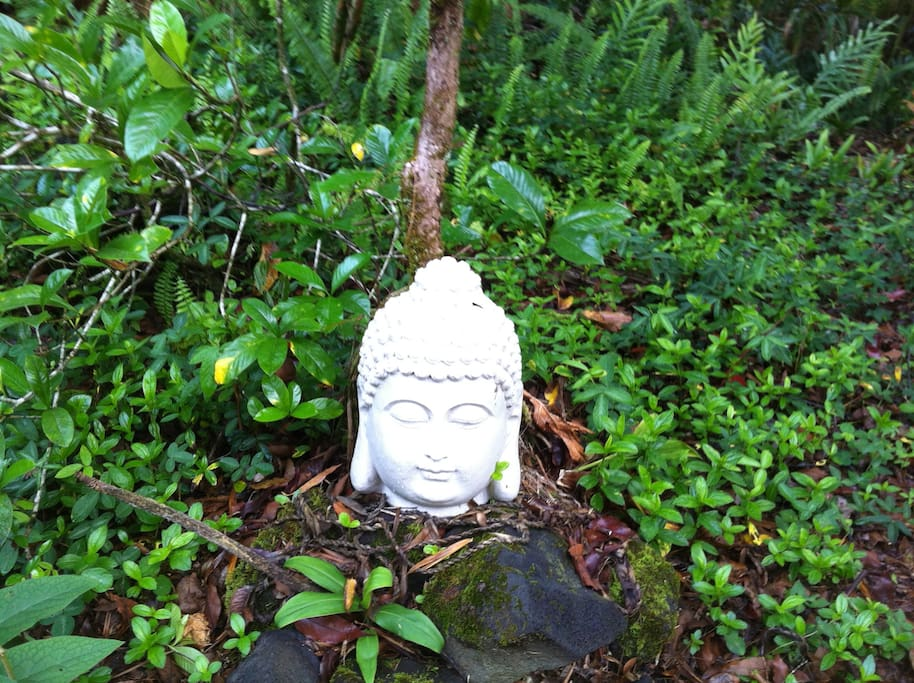 Take a morning or afternoon stroll and visit our meditation gardens.