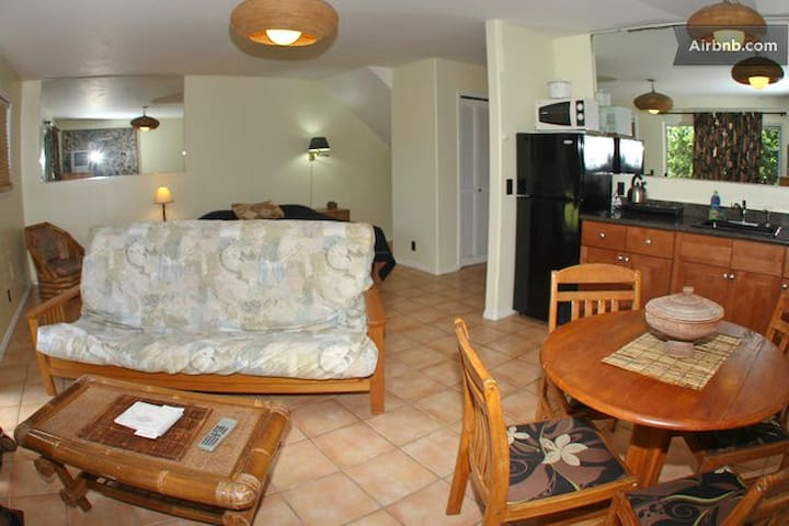 Living area, dinning and kitchenette with bedroom area in the back