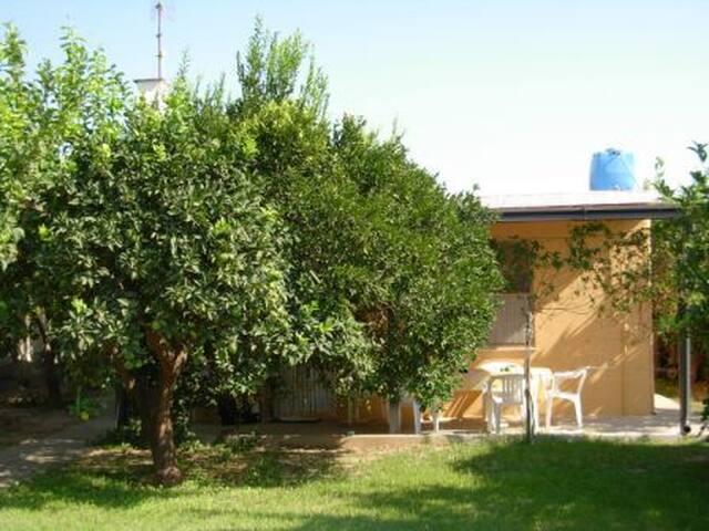 Deliziosa Villetta con giardino a 150m dal mare! - Marina di Davoli - Willa