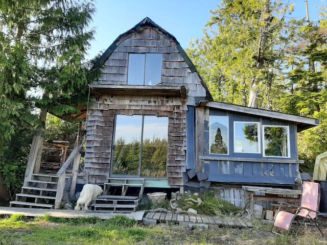 The Forest Dreamer Tiny home