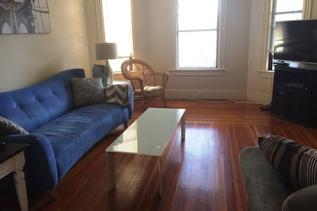 Large Lovely 1 Bed Apartment Close to Davis Sq - Boston - Apartment