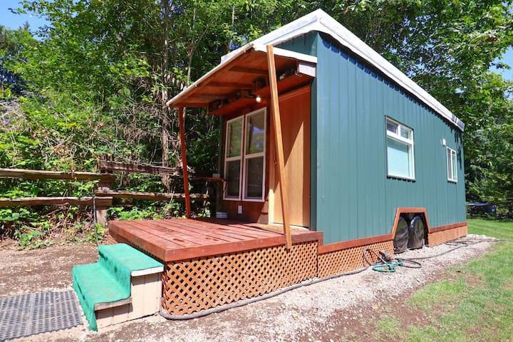 #TinyGalbraith - Mt Biking Paradise - Tiny House