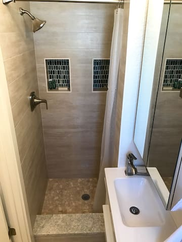 Spa like shower with starter toiletries and spacious niches.  Blow dryer provided.