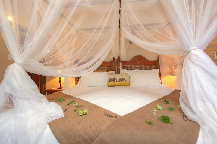 Mvuradona Safari Lodge - Budget Room