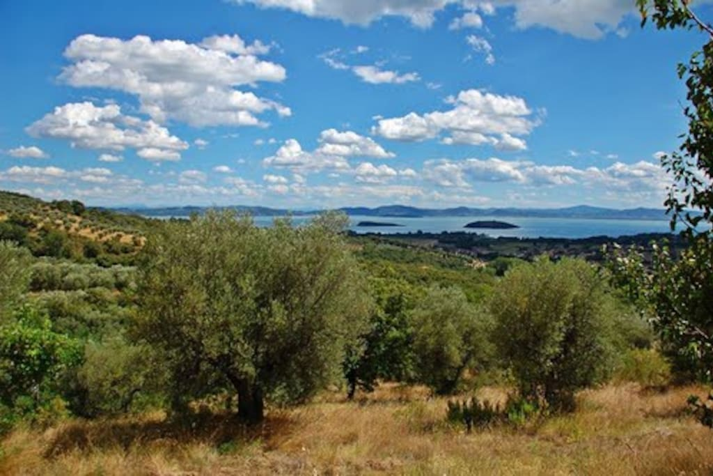 Vacation homes on Trasimeno Lake