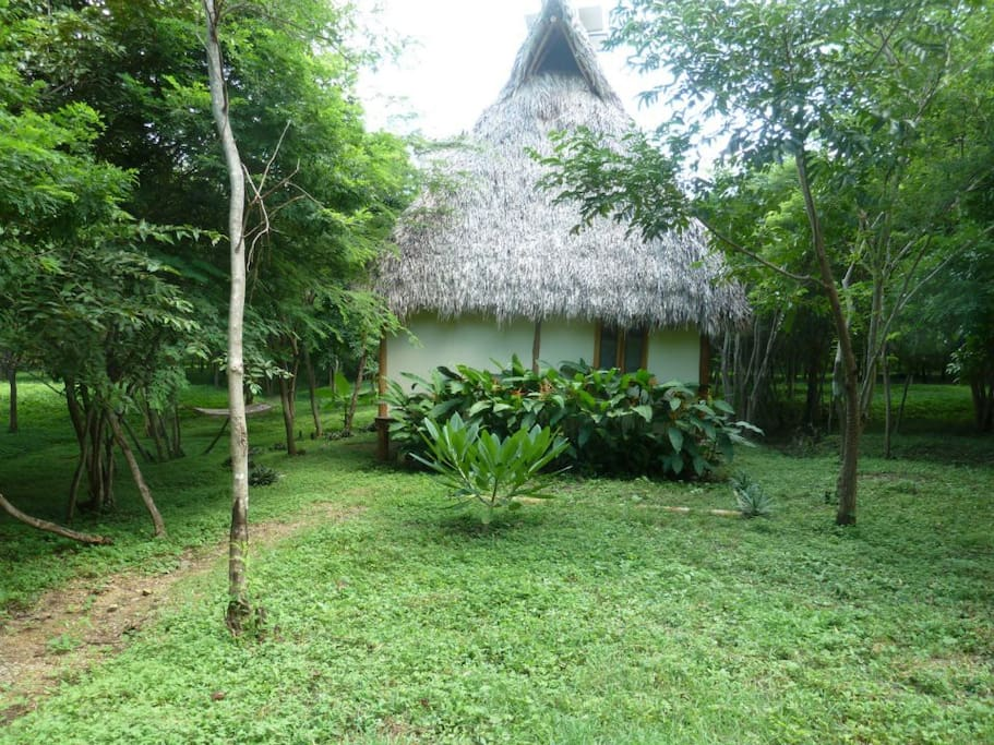 Palm thatch roof keeps the house cool in all seasons
