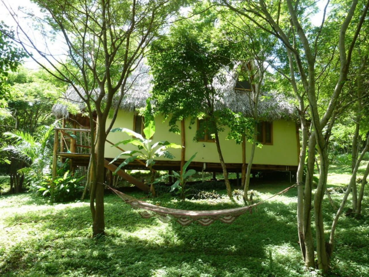 Relax in a hammock or on the spacious back deck