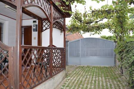Renting house in Vadu Crișului, Romania