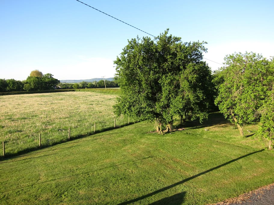 Serene view from the bedroom. WiFi can be accessed around the property.