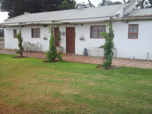 Self Catering Guest Suite 6