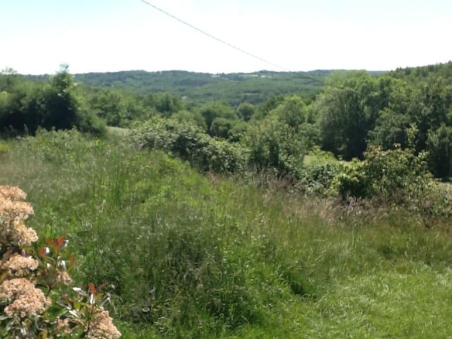 Uitzicht op Haut Serre vlak bij het Foret de la Gresigne.