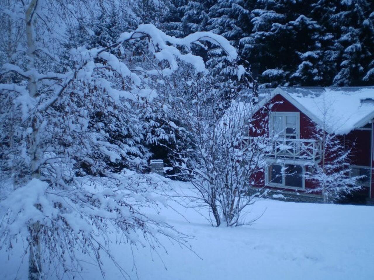 La casa y el bosque en invierno