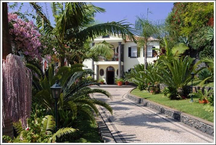 QUINTA FREITAS -WIFI, SEA VIEW, BBQ - Funchal - Villa