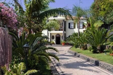 QUINTA FREITAS -WIFI, SEA VIEW, BBQ - フンシャル - 別荘