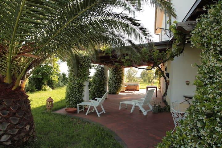 Das Haus der Nachbarn - Tuscania - Haus