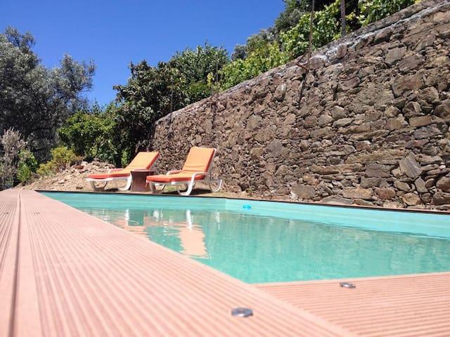 V4 - Alto Douro - Mesão Frio - Haus