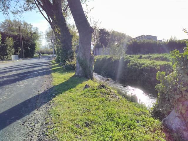 Studio à la campagne, à 5 minutes de Perpignan - Saint-Estève - Leilighet
