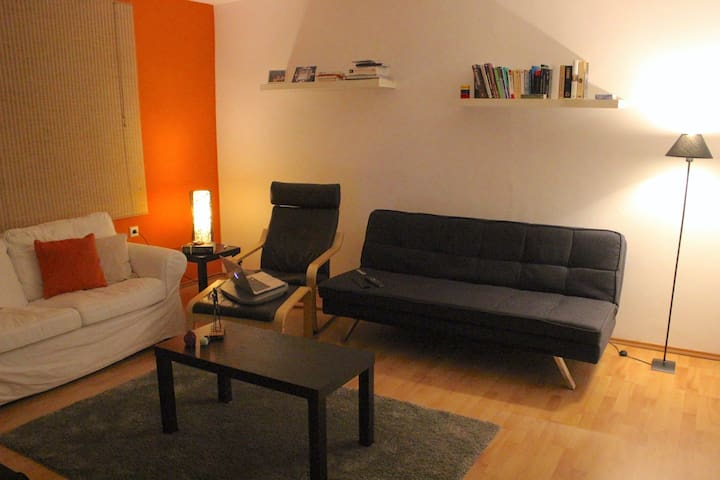 Very comfortable apartment in Mainz - Mainz - Lejlighed
