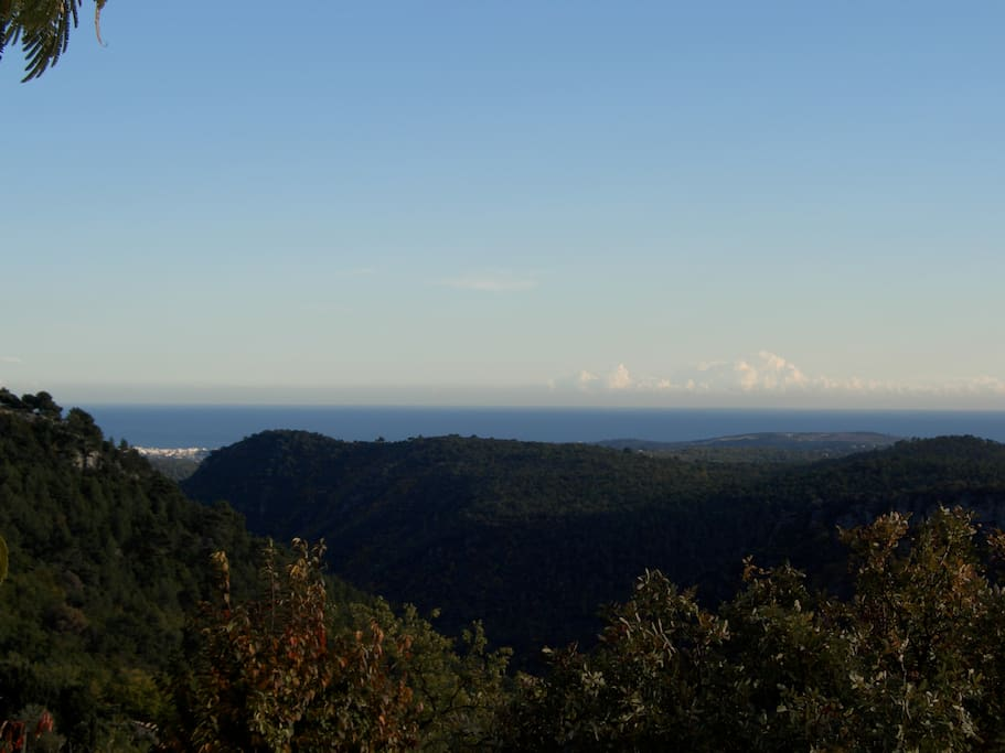 View to Corsica