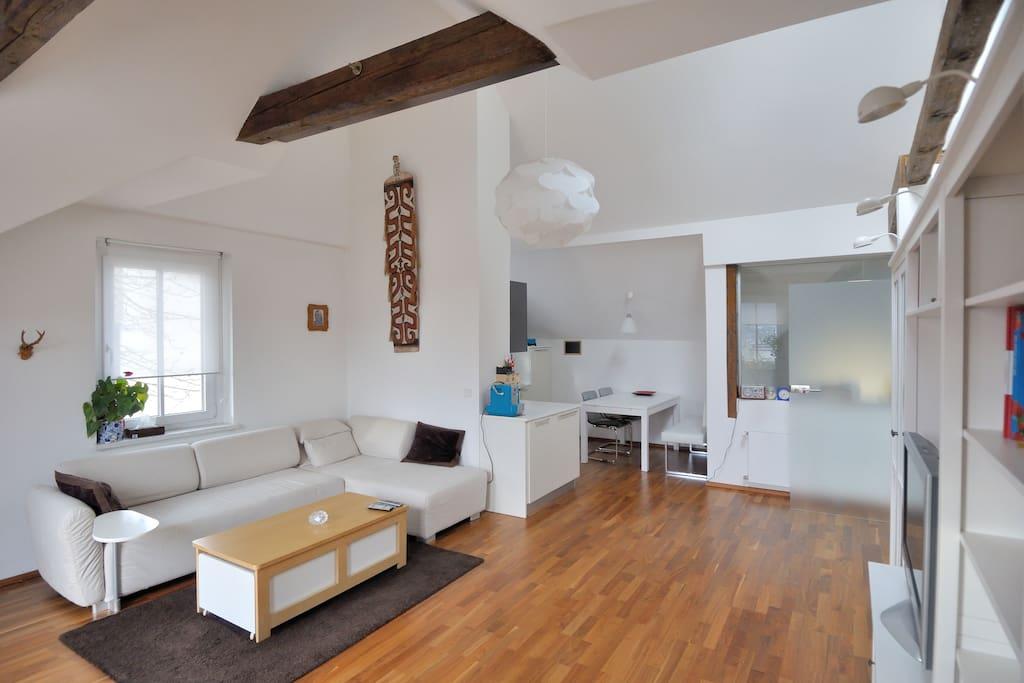 Grosser offener Wohnraum mit vollausgestatteter Küche