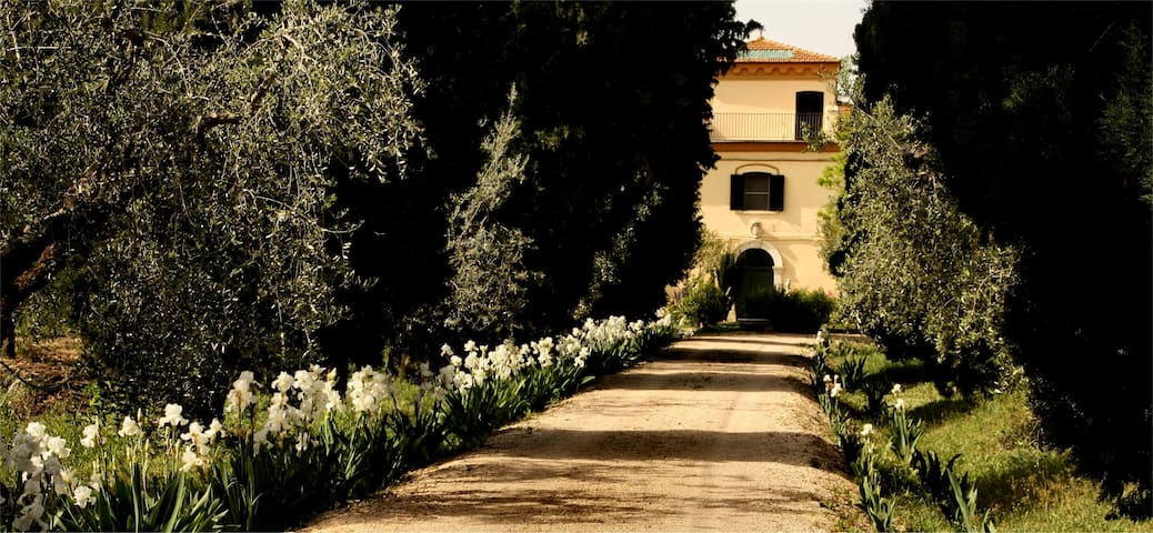 MARINA COLONNA : COUNTRY ESTATE - San Martino in Pensilis - Daire