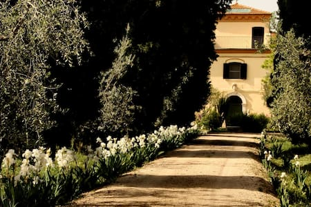MARINA COLONNA : COUNTRY ESTATE - San Martino in Pensilis