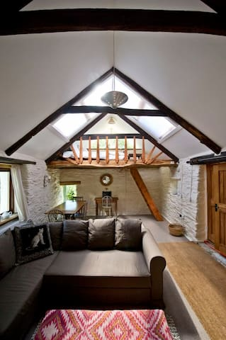 Quirky mill barn conversion with stunning views - Mynachlogddu - Appartement